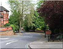 SK5639 : Nottingham - NG7 (Park) by David Hallam-Jones