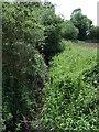 TL0864 : Brook off Staughton Road by JThomas