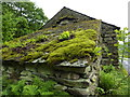 SD2295 : Moss and ferns on barn roof by Peter Barr