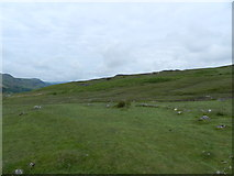 NY2101 : Hardknott Castle by Peter Barr