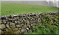 J3246 : Drystone wall. Drumkeeragh near Dromara (1) by Albert Bridge