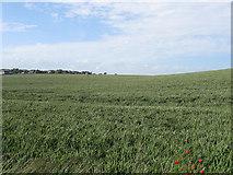 TQ4102 : Gallows Hill (3) by Simon Carey