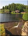SX8083 : Kennick Reservoir by Derek Harper