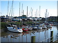 TQ9219 : River Brede by Oast House Archive