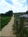SZ3394 : The Solent Way (41) by Shazz