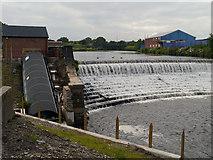 SD7909 : Bealey's Weir, River Irwell by David Dixon