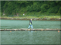 SX2553 : West Looe - walking on water by Chris Allen
