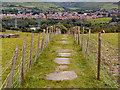 "SJ9699 : ""Flaggy Fields"" - The Path Between Ridge Hill and Heyrod by David Dixon"