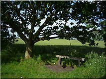 SE6045 : Bench along the Selby cycle path by DS Pugh