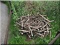 NO0443 : Osprey Nest (mock-up) by Dona Robbins