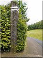 NZ3466 : Path to Albert Edward Dock by David Dixon