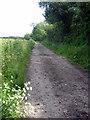 SP8130 : Footpath towards Mursley by Philip Jeffrey