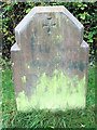 TL1706 : Emily Evans Grave, Hill End Hospital Cemetery, St Albans by Chris Reynolds