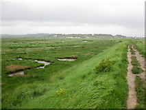 TG0444 : View towards Cley next the Sea by don cload