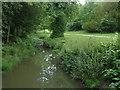 SU9869 : Wick Pond feeder stream by Alan Hunt