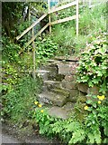 SE0023 : Steps at eastern end of Hebden Royd FP117 by Humphrey Bolton