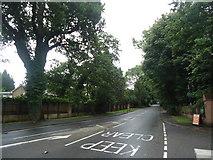 TQ1462 : Copsem Lane, Oxshott by Stacey Harris