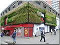 TQ2564 : Green wall, Sutton town centre by Marathon