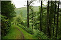 SH6806 : View From the Woods, Nant Gwernol, Gwynedd by Peter Trimming
