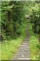 SH6806 : Towards Nant Gwernol Station, Gwynedd by Peter Trimming