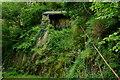 SH6806 : Winding House, Nant Gwernol, Gwynedd by Peter Trimming