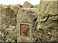 J1860 : Downshire estate boundary post near Moira by Albert Bridge