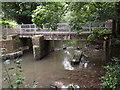 TQ1949 : River Mole Footbridge by Colin Smith