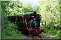 SH6806 : No.2 'Dolgoch' Arriving at Nant Gwernol Station, Gwynedd by Peter Trimming