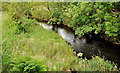 J2750 : The River Lagan near Dromara by Albert Bridge