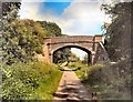 TQ5813 : Shawpits Bridge over Cuckoo Trail by Paul Gillett