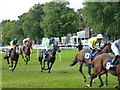 TL6161 : The July Course, Newmarket - Slowing down after the winning post by Richard Humphrey