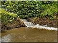 SD7604 : River Irwell, Ringley Fold by David Dixon