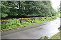 NY5146 : Road junction east of Armathwaite by Roger Templeman