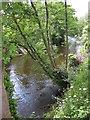 SK2960 : River Derwent, Matlock by Pauline E