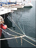 SW4730 : Mooring lines in Penzance Harbour by Rod Allday