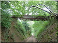 SU7823 : Walkway over the Sussex Border Path by Dave Spicer