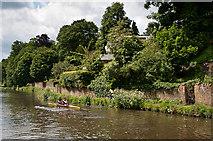 SU9948 : River Wey by Ian Capper
