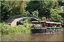 SU9948 : River Wey footbridge by Ian Capper