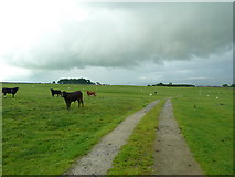 SD7857 : Road to Hile Farm by Alexander P Kapp