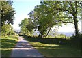 SX6970 : Lane to West Stoke Farm by Derek Harper