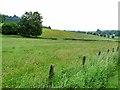 NY7385 : Hay meadow near Smalesmouth Farm by Oliver Dixon