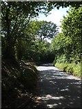 SZ5392 : Brocks Copse Road passing Westwood Farm entrance by David Smith
