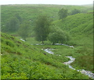 SK2775 : Bar Brook in summer rain by Andrew Hill