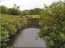 SJ8297 : Wilburn Street Basin, River Irwell by David Dixon