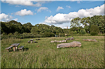 TQ1450 : Steers Field picnic site by Ian Capper