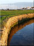 SZ1891 : Mudeford: eastern harbour edge by Chris Downer