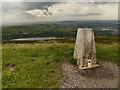 SD6721 : The Triangulation Pillar on Darwen Hill by David Dixon
