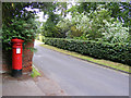 TG1906 : Colney Lane & Colney Lane Victorian Postbox by Adrian Cable