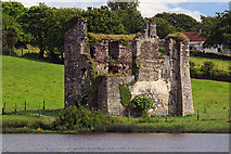 S9827 : Castles of Leinster: Deeps, Wexford by Mike Searle