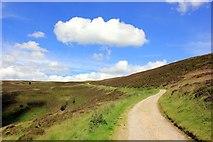 SJ1560 : Offa's Dyke Path near Moel Famau by Jeff Buck